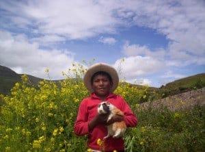 Julber & his cuy in Apurimac, Peru