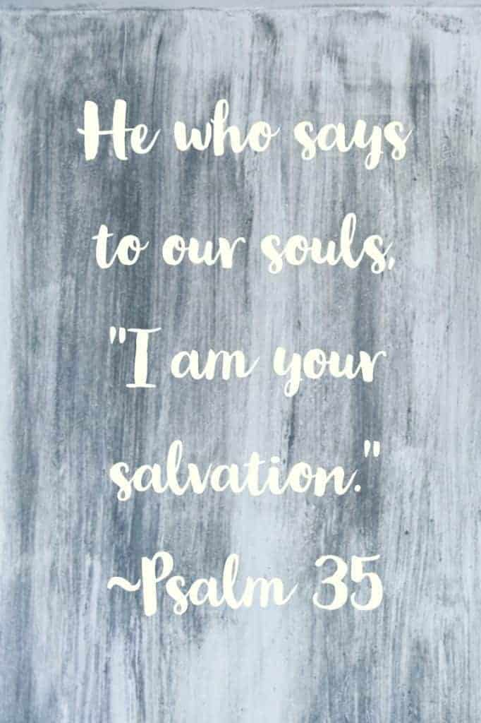 Psalm 35 - Daily Devotions from the Psalms